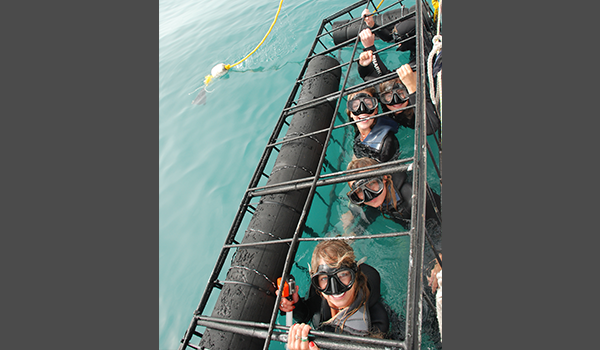 Group of people in Shark cage